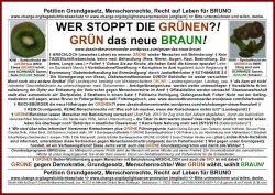 gruene-das-neue-braun-kiwi-150dpi_7-frame