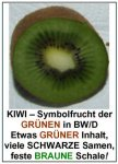 kiwi-text